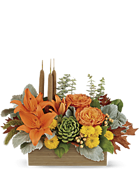 Fall Bamboo Garden   Mixed Bouquets   Same Day Flower Delivery   Multi-Colored   Teleflora