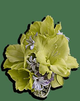 Soft Green Glamour Wristlet | Corsages | Same Day Flower Delivery | Teleflora