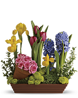 Spring Favorites   Mixed Bouquets   Same Day Flower Delivery   Multi-Colored   Teleflora