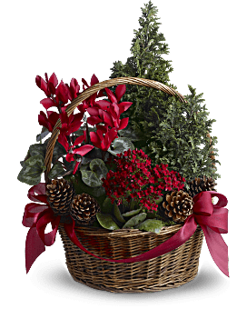 Tannenbaum Basket | Mixed Bouquets | Same Day Flower Delivery | Red | Teleflora